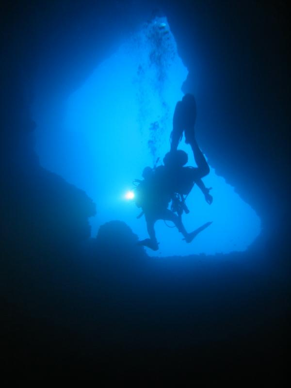 Open Water Diver Course + Accomodation
